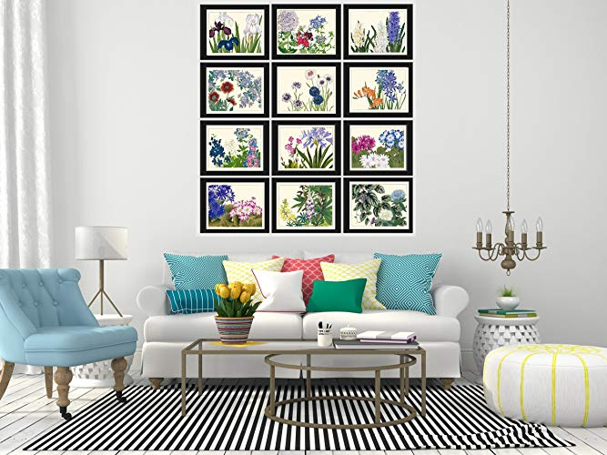 Botanical Wall Decor - Botanical Wall Art